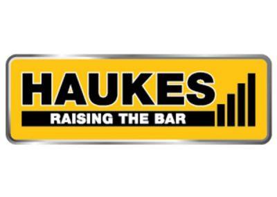 Haukes-600x321
